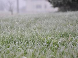 View Winter Fertilisers