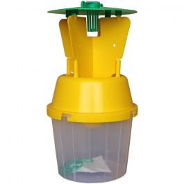 Chafer Beetle Trap with pheromone for capturing adults
