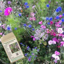Amvista Greenwich Honey Bee Pure Wildflower Mix 100%