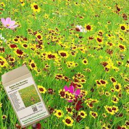 Amvista Kew Butterfly Pure Wildflower Mix 100%