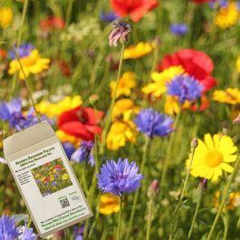 Amvista Richmond Palette Pure Wildflower Mix 100%