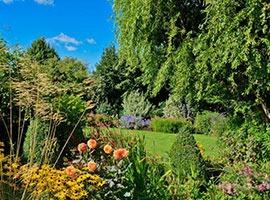 Trees, shrubs, vegetables & flowers